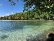 Gelliceaux Beach On Mustique Island