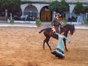 Passion And Spirit Of The Andalusian Horse At The Caballerizas Reales