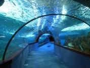 Aquarium Of Donostia San Sebastian, Spain