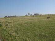 Hadrians Wall – Milecastle 50 – High House